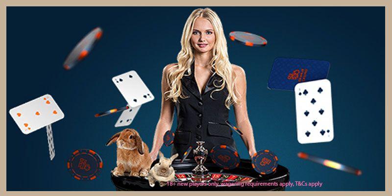 Reload bingo online 70677